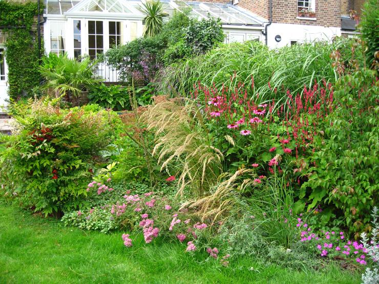Naturalistic Garden 171 Lucy Sommers Gardens