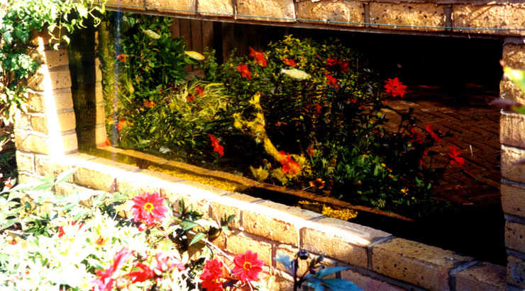 Garden fish tank bing images for Garden with fish tank